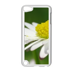 Daisy With Drops Apple iPod Touch 5 Case (White)