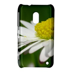 Daisy With Drops Nokia Lumia 620 Hardshell Case