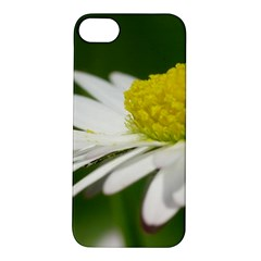 Daisy With Drops Apple iPhone 5S Hardshell Case