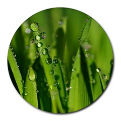 Grass Drops 8  Mouse Pad (round)