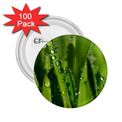 Grass Drops 2 25  Button (100 Pack)