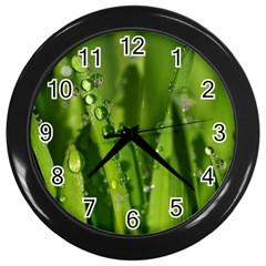 Grass Drops Wall Clock (Black)