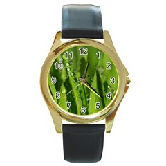 Grass Drops Round Leather Watch (Gold Rim)