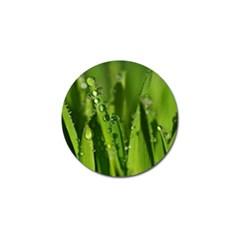 Grass Drops Golf Ball Marker
