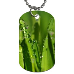 Grass Drops Dog Tag (Two-sided)