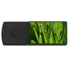 Grass Drops 4gb Usb Flash Drive (rectangle)