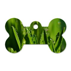 Grass Drops Dog Tag Bone (two Sided)
