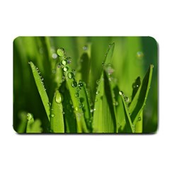 Grass Drops Small Door Mat