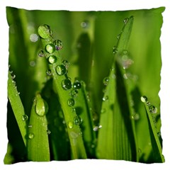 Grass Drops Large Cushion Case (Single Sided)