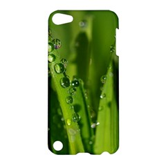Grass Drops Apple iPod Touch 5 Hardshell Case