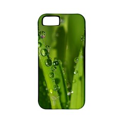 Grass Drops Apple iPhone 5 Classic Hardshell Case (PC+Silicone)