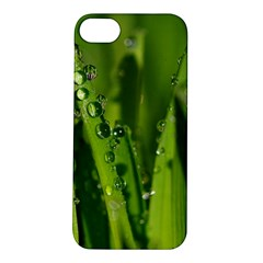 Grass Drops Apple Iphone 5s Hardshell Case