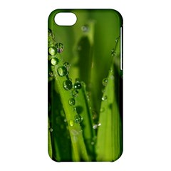 Grass Drops Apple Iphone 5c Hardshell Case