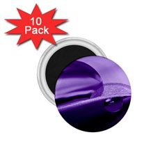 Drops 1 75  Button Magnet (10 Pack)