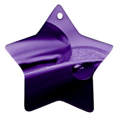 Drops Star Ornament (Two Sides)