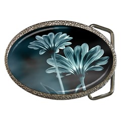 Osterspermum Belt Buckle (Oval)