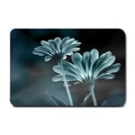 Osterspermum Small Door Mat 24 x16 Door Mat - 1