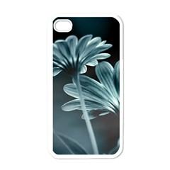 Osterspermum Apple iPhone 4 Case (White)