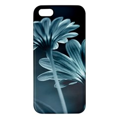 Osterspermum iPhone 5S Premium Hardshell Case