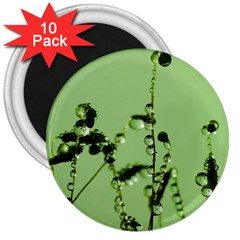 Mint Drops  3  Button Magnet (10 pack)