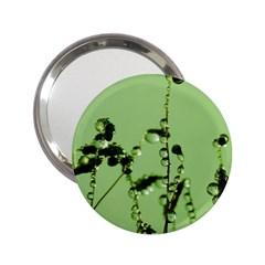 Mint Drops  Handbag Mirror (2 25 )