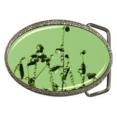 Mint Drops  Belt Buckle (Oval)