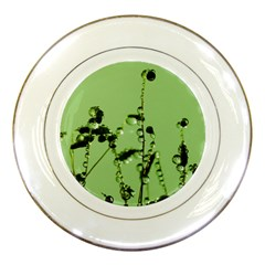 Mint Drops  Porcelain Display Plate