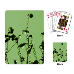 Mint Drops  Playing Cards Single Design