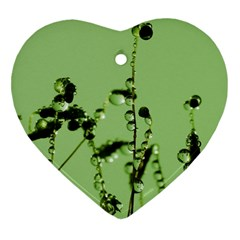 Mint Drops  Heart Ornament (two Sides)