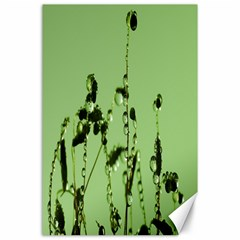 Mint Drops  Canvas 24  x 36  (Unframed)