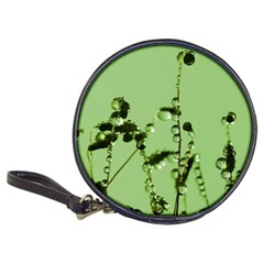 Mint Drops  CD Wallet