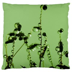 Mint Drops  Large Cushion Case (Single Sided)