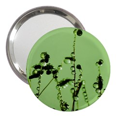 Mint Drops  3  Handbag Mirror