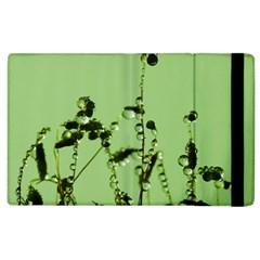 Mint Drops  Apple iPad 2 Flip Case