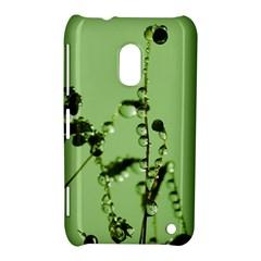 Mint Drops  Nokia Lumia 620 Hardshell Case