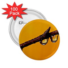 Tree Drops  2.25  Button (100 pack)