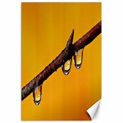 Tree Drops  Canvas 20  x 30  (Unframed)