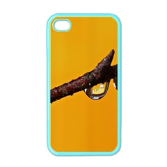 Tree Drops  Apple Iphone 4 Case (color)