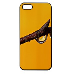 Tree Drops  Apple iPhone 5 Seamless Case (Black)