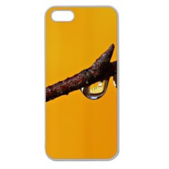 Tree Drops  Apple Seamless iPhone 5 Case (Clear)