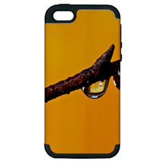 Tree Drops  Apple iPhone 5 Hardshell Case (PC+Silicone)