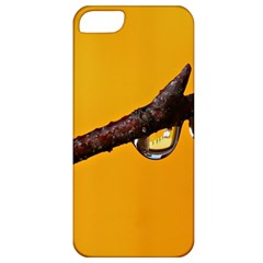 Tree Drops  Apple Iphone 5 Classic Hardshell Case