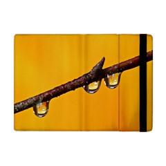 Tree Drops  Apple iPad Mini Flip Case