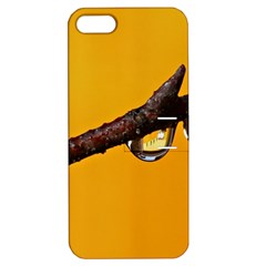 Tree Drops  Apple iPhone 5 Hardshell Case with Stand