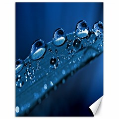 Drops Canvas 18  x 24  (Unframed)
