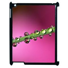 Drops Apple Ipad 2 Case (black)