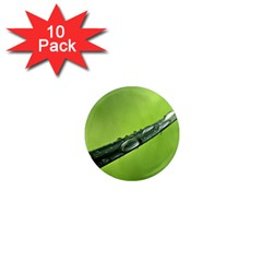 Green Drops 1  Mini Button Magnet (10 pack)