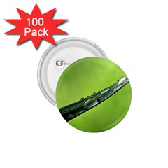 Green Drops 1.75  Button (100 pack)