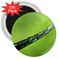 Green Drops 3  Button Magnet (100 pack)