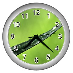 Green Drops Wall Clock (Silver)